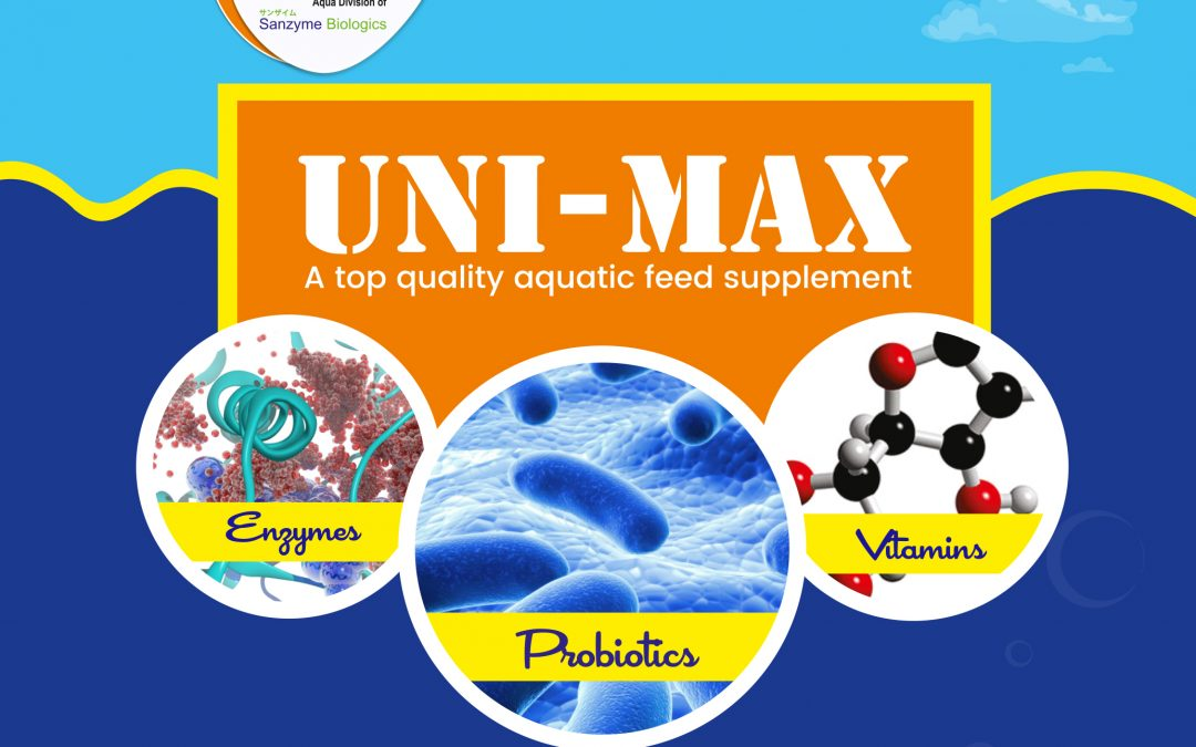 Application and uses of Sanzyme's Uni Max in Shrimp Aquaculture