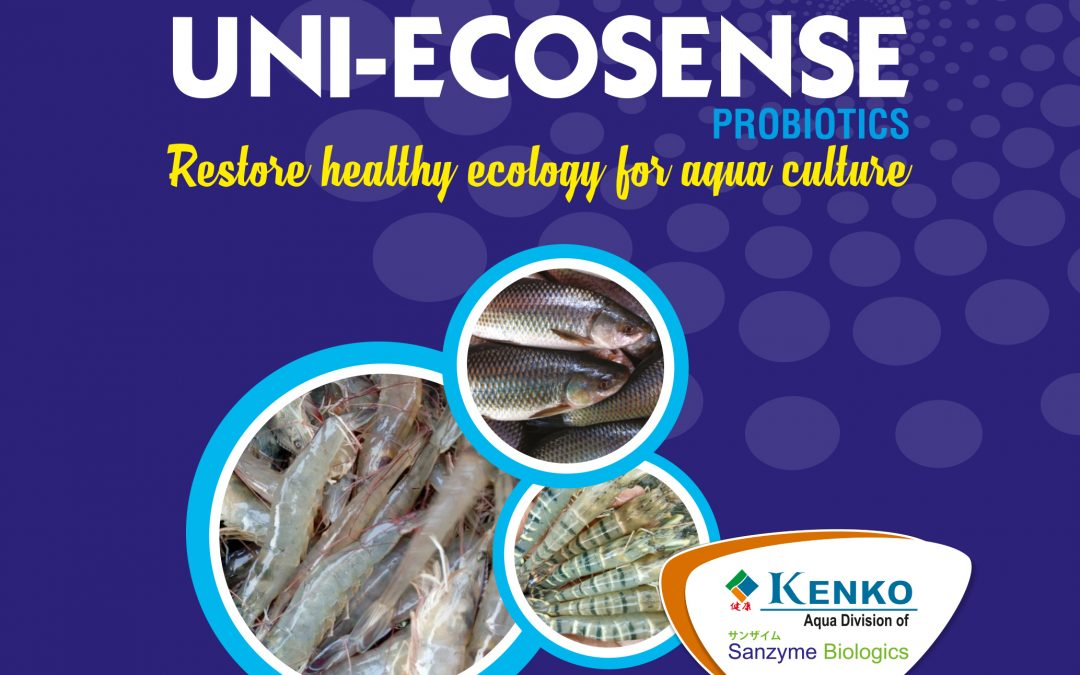 Application and uses of Sanzyme's Uni Ecosense in Shrimp Aquaculture